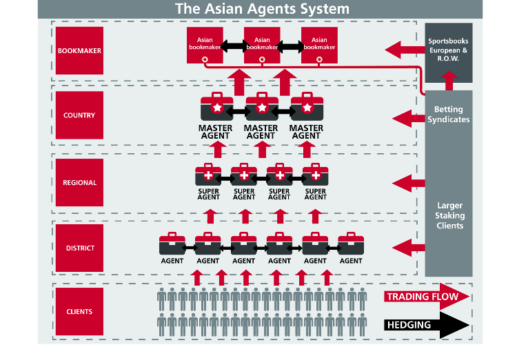 Asian Agent System