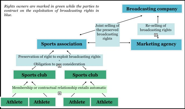 Hungarian Sport Broadcasting Structure