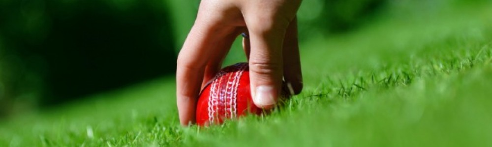 Cricket ball being picked up
