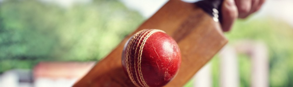 Cricket ball hitting bat