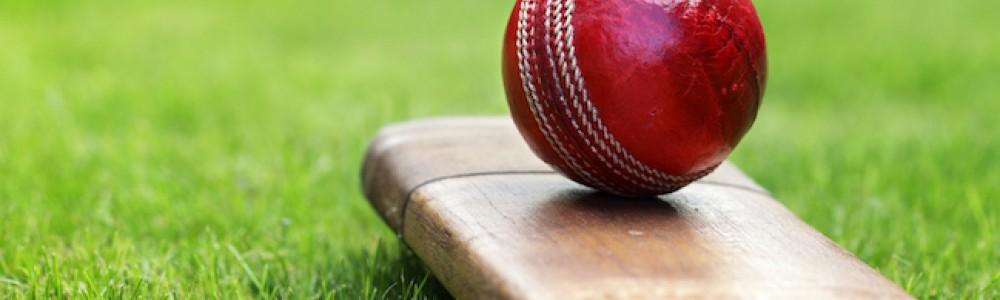 Cricket ball on bat resting on grass