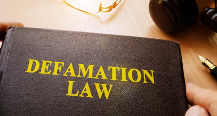 Defamation Law Book