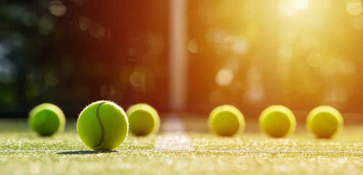 Tennis Ball Grass